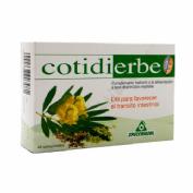 COTIDIERBE FLOR 30 COMPRIMIDOS